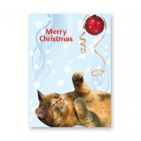 CAT (GINGER) CHRISTMAS CARD PACK OF FIVE